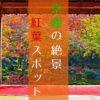 【紅葉】インスタ映え必至!京都の絶景紅葉スポット