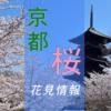 【桜情報】京都で行ってみたい!おすすめ人気花見スポット13選〜2020年度版〜